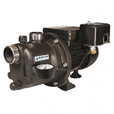 BURCAM 506221P Noryl Shallow Well Jet Pump
