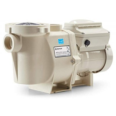 Pentair 11018 3 HP Intelliflo Variable Speed Pump, 230-Volt, 16-Ampere