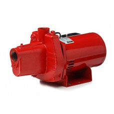 Red Lion RJS-100 Shallow Well Jet Pump, Cast Iron, 1-HP 24-GPM